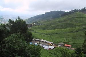 Daftar Tarif Harga Hotel Cianjur Cipanas Puncak Bogor
