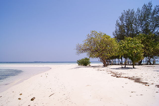 gambar foto pulau karimunjawa terbaik bagus pantai laut Tips Berpetualang Menuju Objek Wisata Karimun Jawa Dari Jakarta