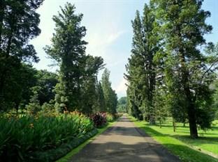 Penginapan Bintang Empat Pemandangan Kebun Raya Bogor